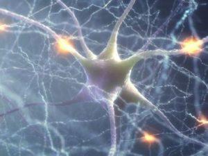 synaptic plasticity in addiction treatment