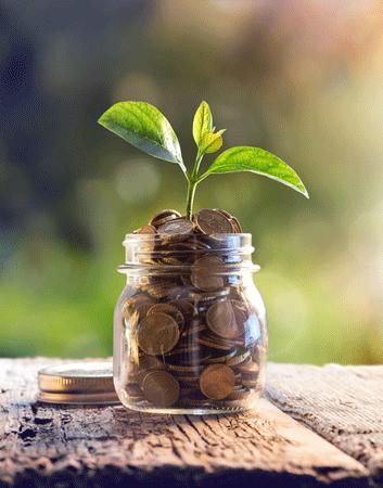 money saved for rehab