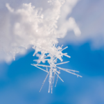 image of snowflake symbolizing the relationship between sensitivity and addiction