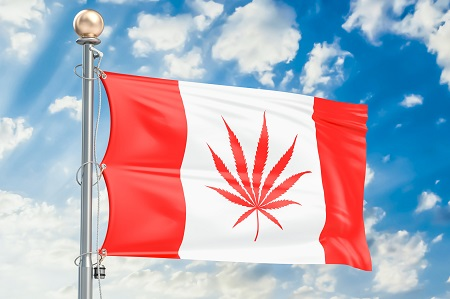 image of canadian flag with cannabis leaf