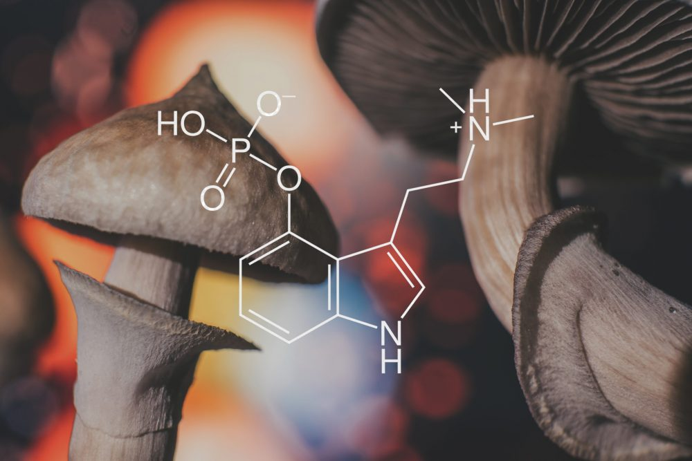 psychedelic research efforts being made with chemicals similar to psilocybin